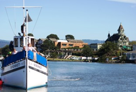 Best of California's Redwood Coast Itinerary