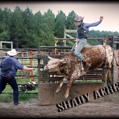 Bull Riding on the Farm