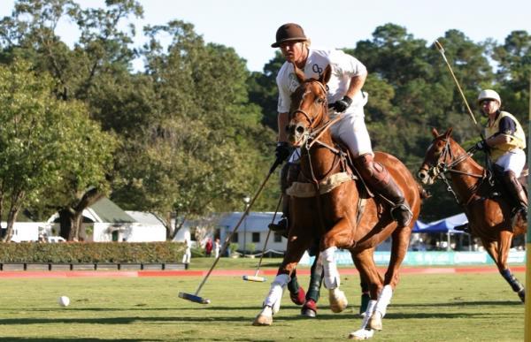 Houston Polo