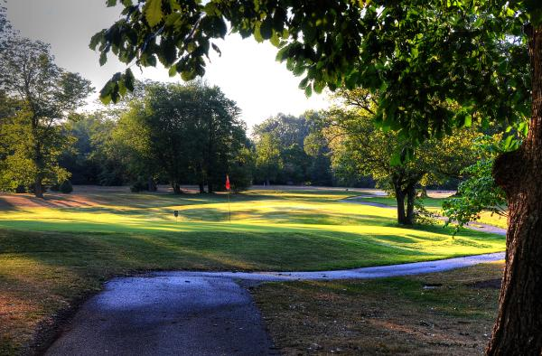 fort wayne golf foster park