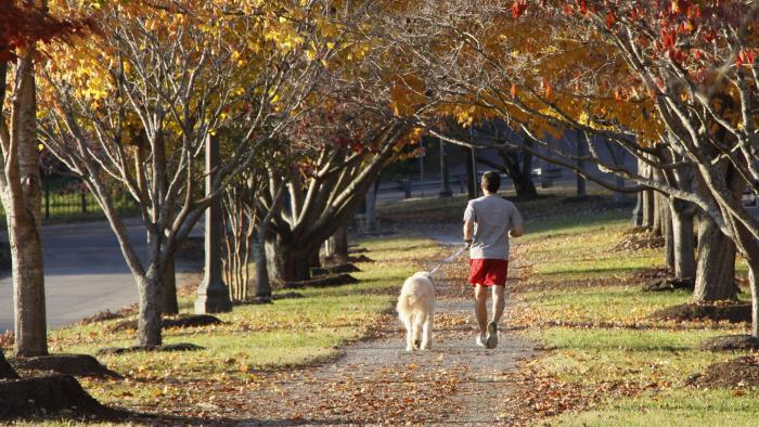 Sequoyah Park