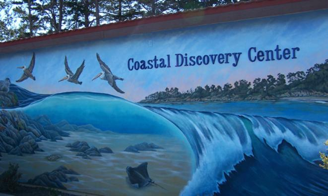 Coastal Discovery Center Field Trips