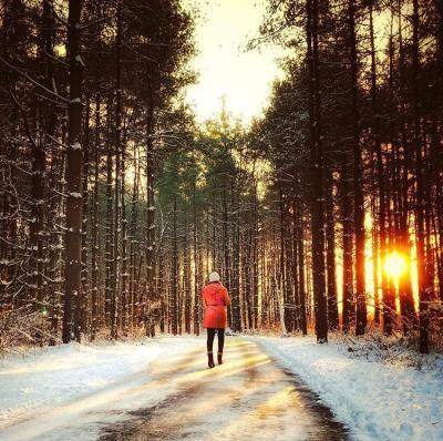 winter hike at Walnut Woods
