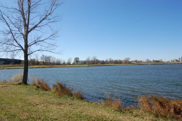 Lake Petocka