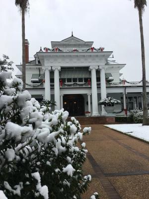 mcfaddin-ward (snow)