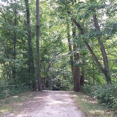 Burkhart Woods Trail