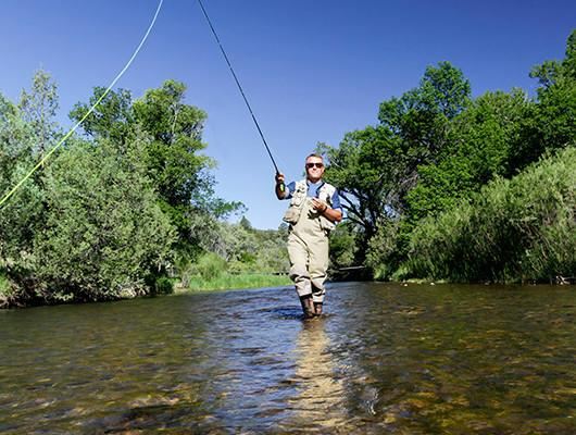 Fishing fly fishing in new mexico lakes rivers for Fishing new mexico
