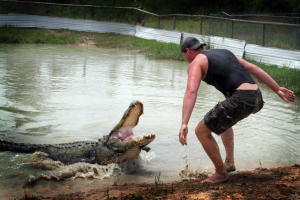 Gator Rescue Tournament