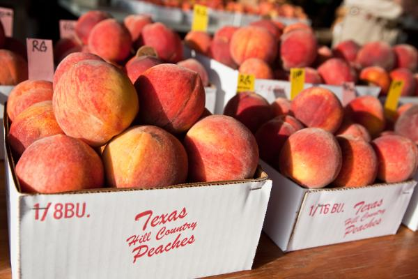 Fredericksburg peaches