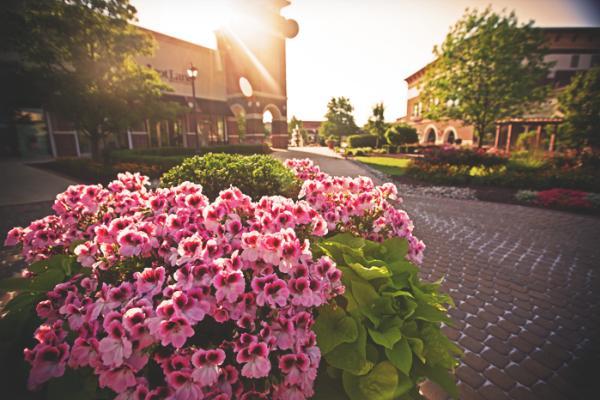 Jefferson Pointe - Spring