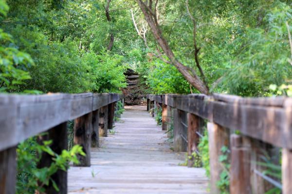Fort Worth Nature Center bridge