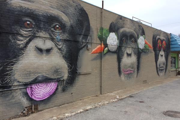 The Monkeys - Autumn Reo