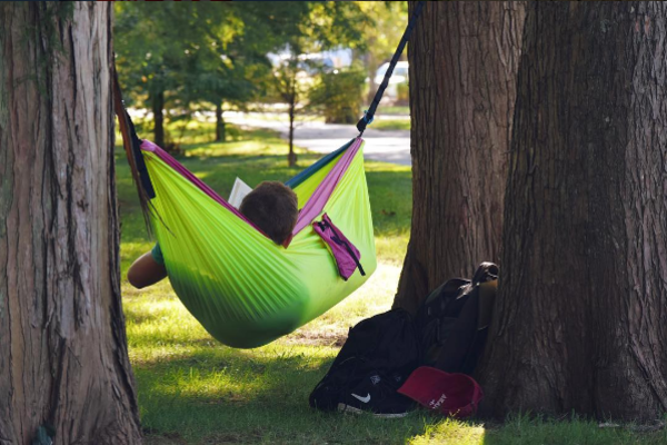 dunn woods hammock