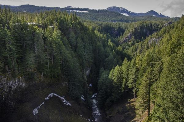 Salt Creek Falls in Oakridge by Katie McGuigan