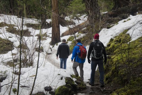 Winter Hiking on the McKenzie River Trail