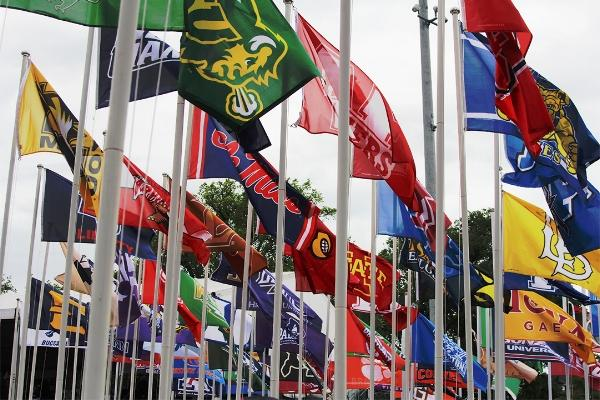 NCAA Flags by Janelle Breedlove