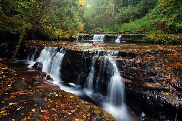 Sweet Creek in the Fall by Greg Lief, LiefPhotos.com