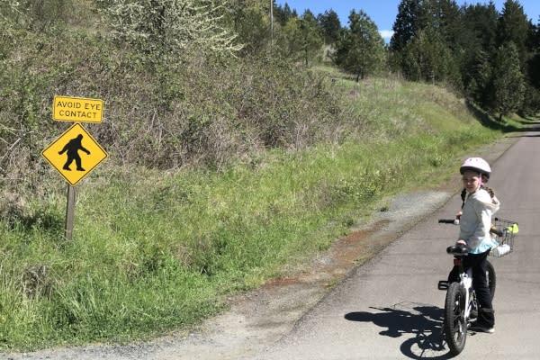 Sasquatch Warning on the Row River Trail by Taj Morgan