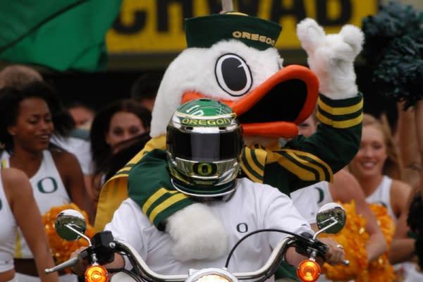 University of Oregon Mascot Duck by John Giustina