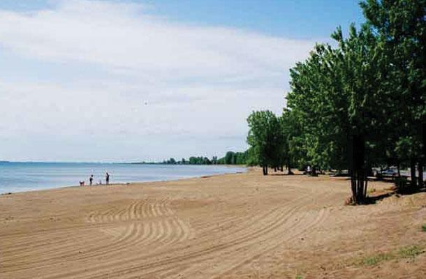 beach within reach 4