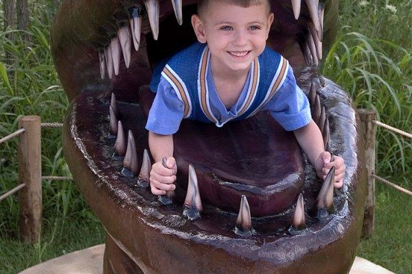 Boy in Dinosaur