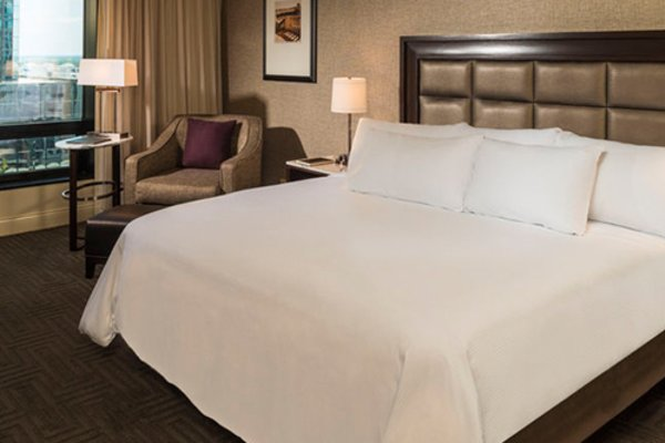 Tampa Hotels Hilton Downtown Tampa King Room