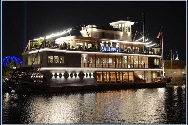 Paddlefish on the Water
