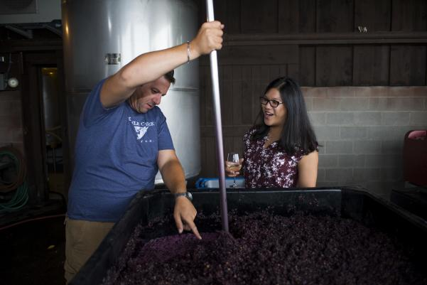 Winery Tour Education