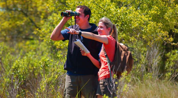 Birdwatching at Carolina Beach State Park