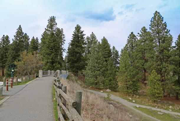 Spokane Valley Centennial Trail 3