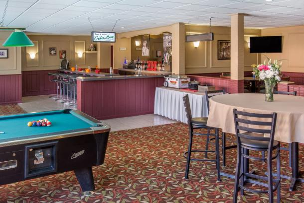 Pub & Grill Pool Table