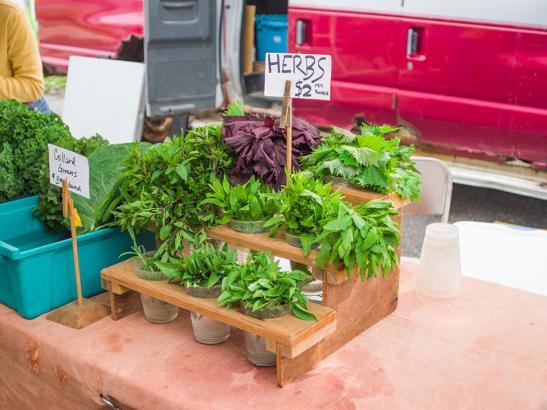 A variety of herbs > credit choochoo-ca-chew.