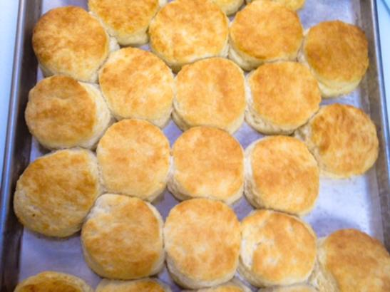 biscuits baked daily!