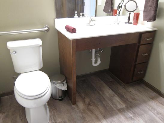 Tara's Place: Barrier-free bathroom