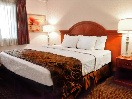 Extended Stay Suite - Bedroom