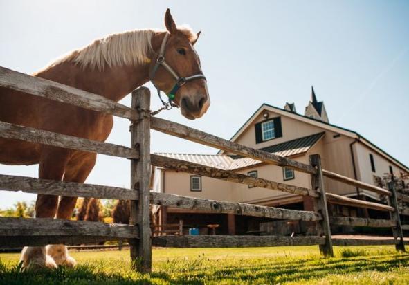Ironstone Ranch