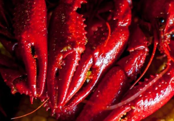 Jeff's Got Crabs & Seafood, York County, PA, Food, Dining, Restaurant