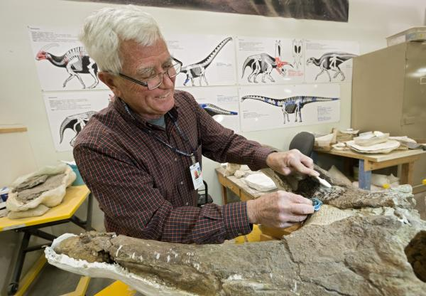 Denver Museum of Nature & Science's fossil prep lab