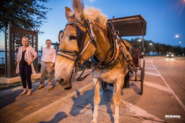 Carriage Rides in Lake Charles | Michael L. Hobby