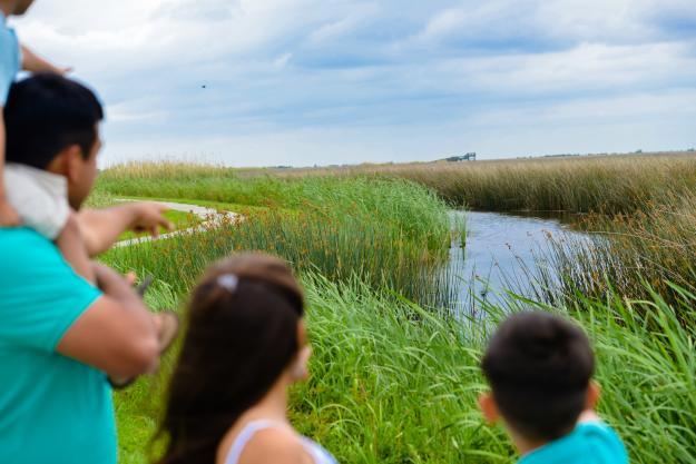 Wetland Walkway on the Creole Nature Trail