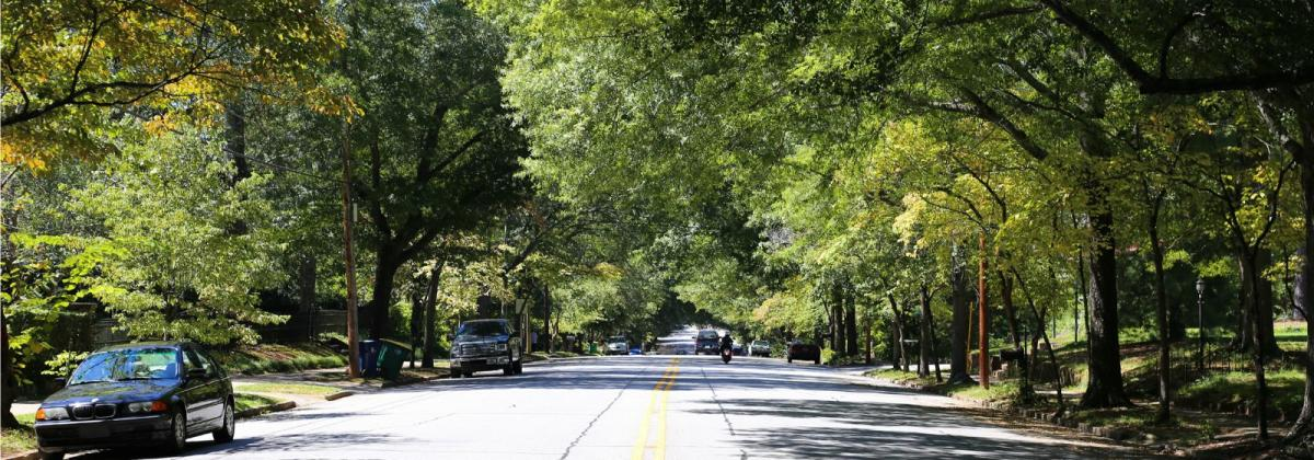 Boulevard Neighborhood Athens GA