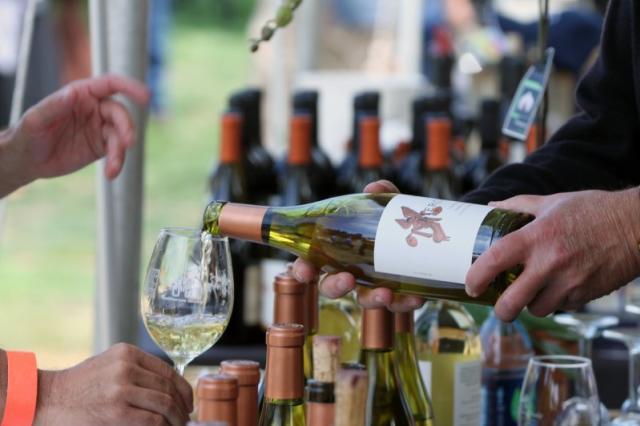 Winemakers' Celebration