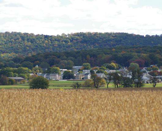 Alburtis-Landscape.jpg