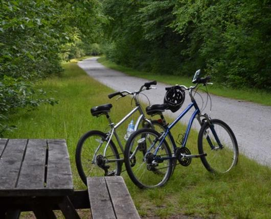 Bikes-with-Picnic-Table-on-Lehigh-Gorge-Trail-web.jpg