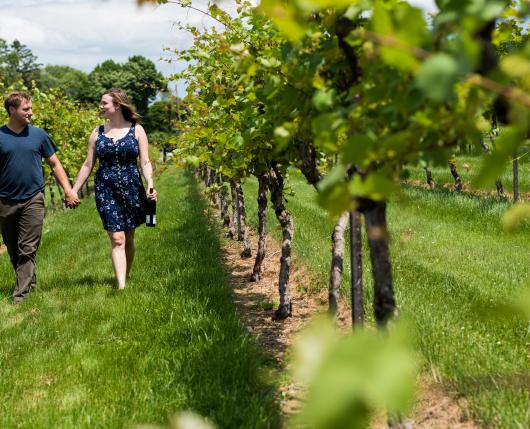 CloverHillWinery04_DiscoverLehighValley_ColinColemanPhotography