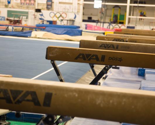 ParkettesGymnastics01_DiscoverLehighValley