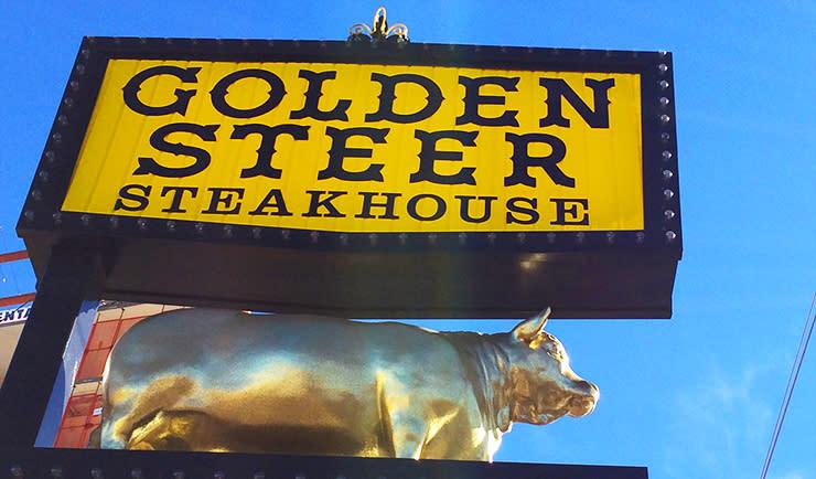 Sinatra - Golden Steer 1