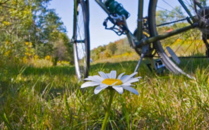Bike-the-GAP.com 2