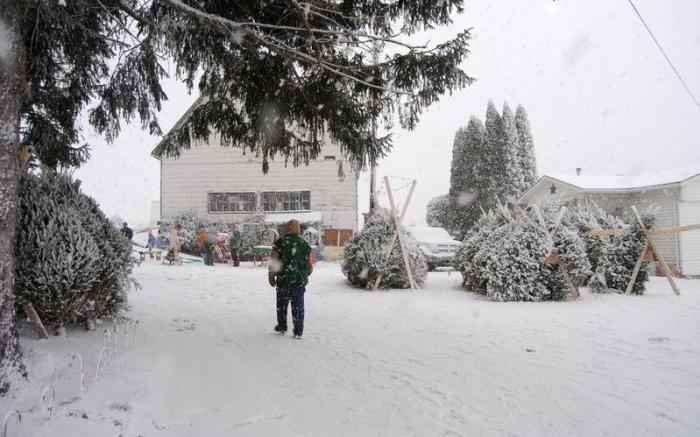 The snow had fallen