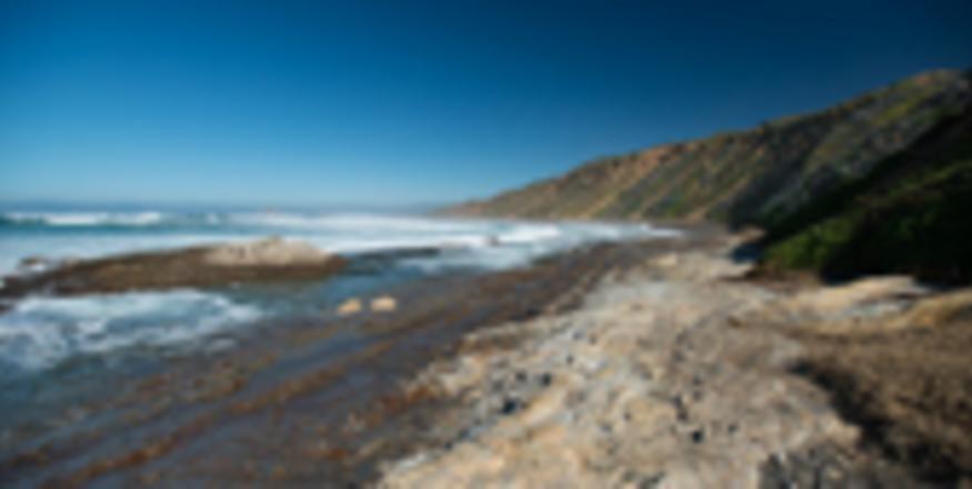 Hazard Canyon Reef